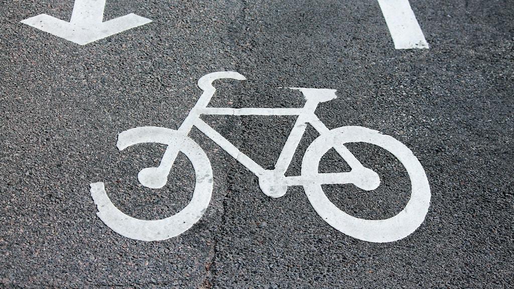 Cykelväg. Foto: Nick Näslund/Sveriges Radio