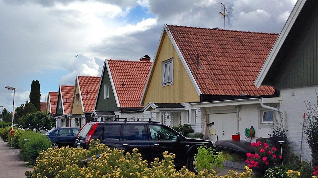 Radhusområde sommar. Foto: Ida Lindhagen.