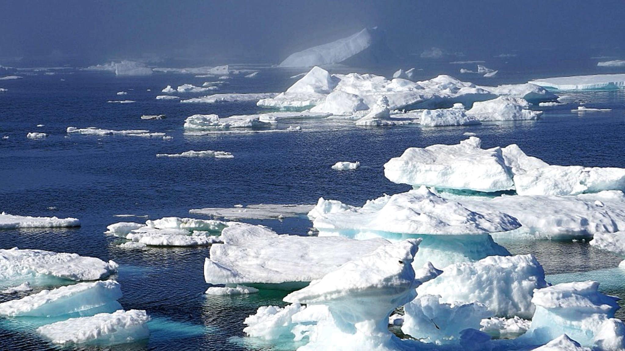 Flygkraschen i Ishavet av Anna Hammarén