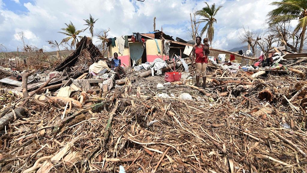 Berättelser från Haiti efter orkanen