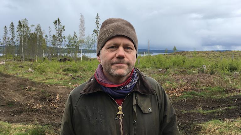 Martin Norlander på ett kalhygge i Glaskogen