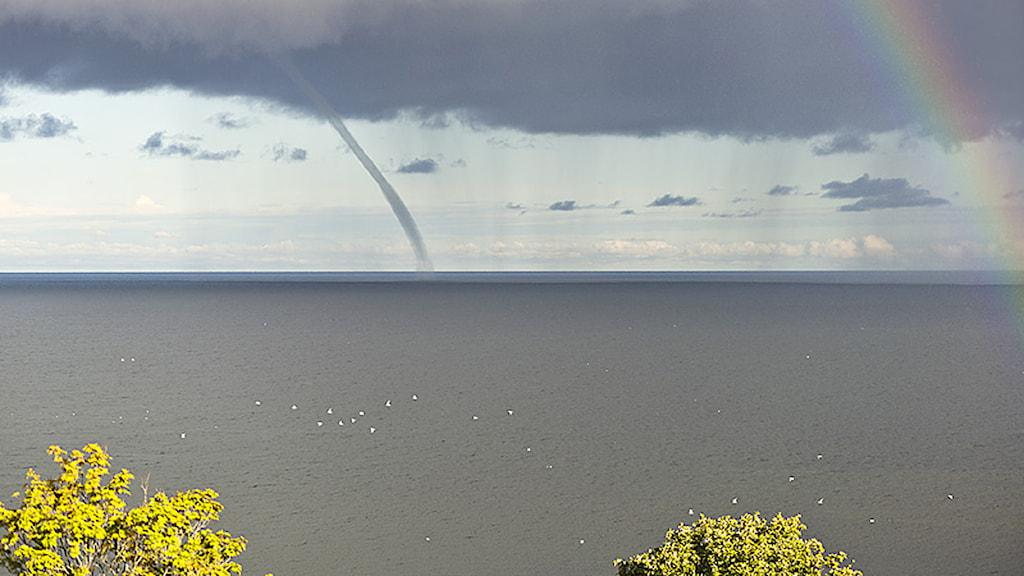 Tromb utanför Snäck. Foto: Lars Lundqvist. Klicka för större bild