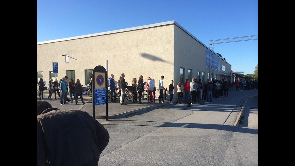 Många köade för att söka jobb på Biltema i Visby. Foto: Jonas Neuman/Sveriges Radio