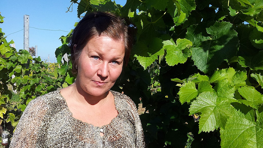 Linda Aronsson vinodlare i Bårslöv.Foto: Anna Hanspers/Sveriges Radio