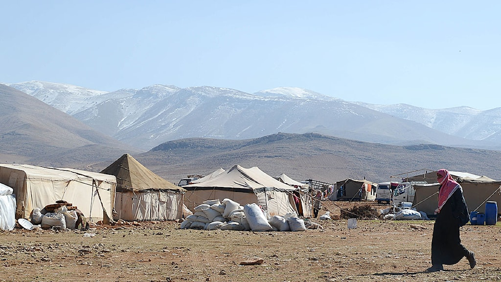 En kraftigt ökande flyktingström från Syrien ligger bakom förslaget. Foto: Lina Malers/TT