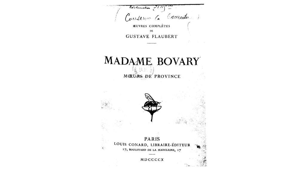 social class in madame bovary In madame bovary, flaubert combines the study of individual  social class is a  major theme in the novel as we gain insight into the.