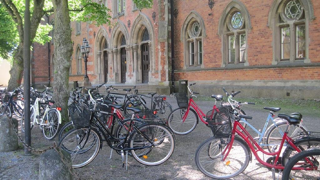 Djäkneskolan i Skara. Foto: Kristoffer Hilmersson / P4 Skaraborg Sveriges Radio