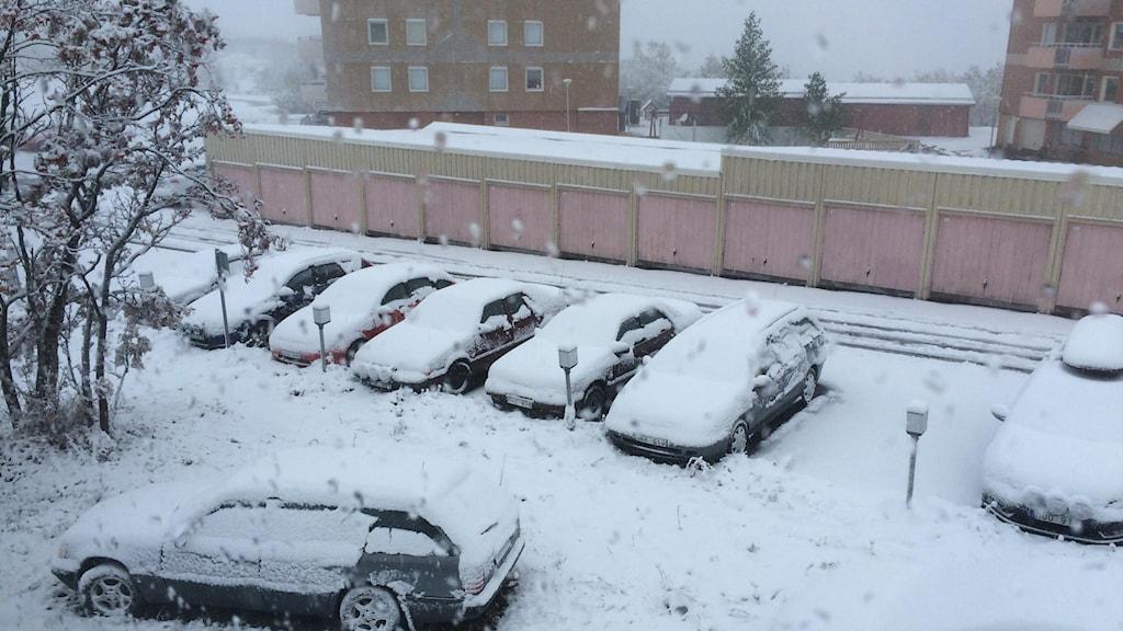 Snöfall i Kiruna. Foto: Linnea Luttu/Sveriges Radio