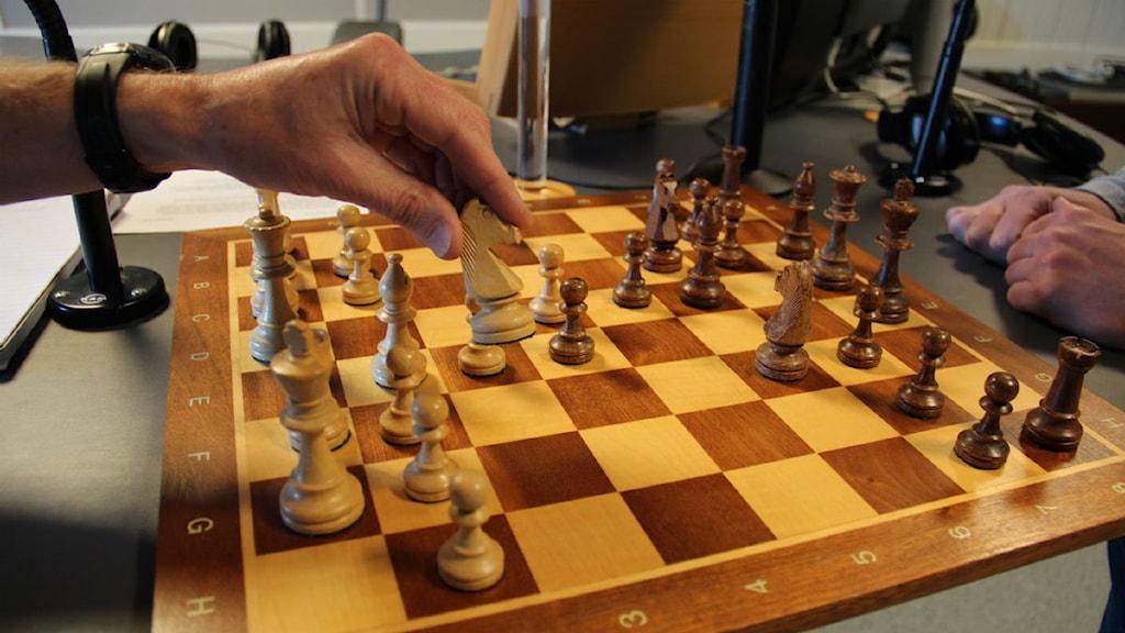 schack sverige